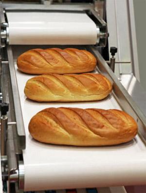 Food Processing Belt